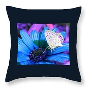 Busy Little Butterfly Throw Pillow