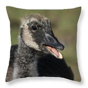 Busy Talking Throw Pillow