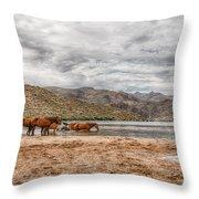 Butcher Jones Horses Throw Pillow
