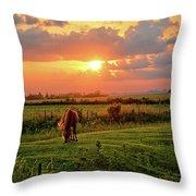 Butler Center Pasture Throw Pillow