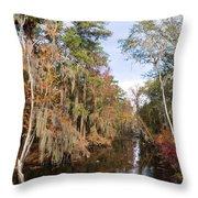 Butler Creek In Autumn Colors Throw Pillow