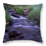 Butler Gulch Water Throw Pillow