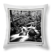 Butte Creek Throw Pillow