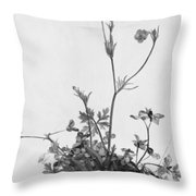 Butter Cups Red Clover And Plantain 1526 Throw Pillow