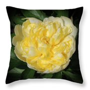 Buttercream Peony Throw Pillow