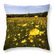 Buttercup Field Throw Pillow