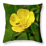 Buttercup Hospitality Throw Pillow