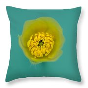 Buttercup, Ranunculus Throw Pillow