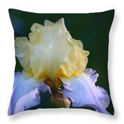 Buttered Blueberry  Throw Pillow