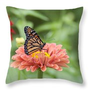Butterflies And Blossoms Throw Pillow by Bill Cannon