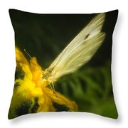 Butterflies And Blossoms Throw Pillow