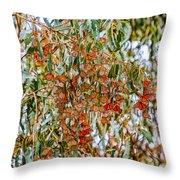 Butterflies In The Grove  Throw Pillow
