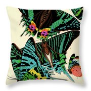 Butterflies, Plate-7 Throw Pillow