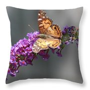 Butterfly 3 Throw Pillow