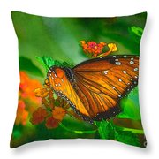 Butterfly 30 Throw Pillow