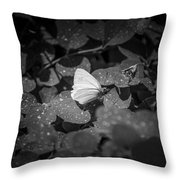 Butterfly 8 Throw Pillow