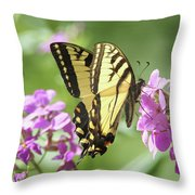 Butterfly #9 Throw Pillow