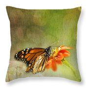 Butterfly And Bokeh Throw Pillow