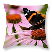 Butterfly And Cone Flowers Throw Pillow