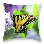 Butterfly And Lilacs Throw Pillow