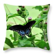Butterfly And Mossy Pond Throw Pillow