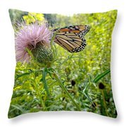 Butterfly And Pink Wildflower Throw Pillow