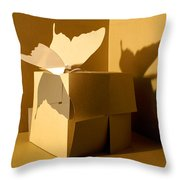 Butterfly And The Cube 1 Throw Pillow
