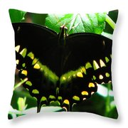 Butterfly Art 3 Throw Pillow