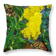 Butterfly At Cape May Nj Throw Pillow