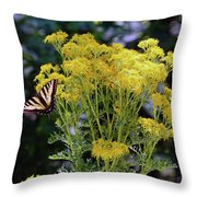 Butterfly At Wilson Creek #2 Throw Pillow by Ben Upham III