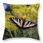 Butterfly At Wilson Creek #3 Throw Pillow by Ben Upham III