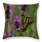 Butterfly Balancing Act Throw Pillow
