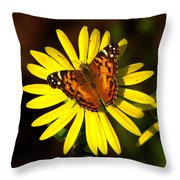 Butterfly Bloom Throw Pillow
