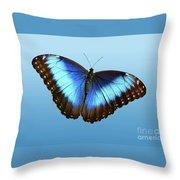 Blue Morpho Beauty Throw Pillow