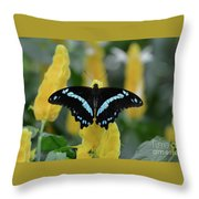 Butterfly Blue Striped Throw Pillow