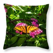 Butterfly Throw Pillow