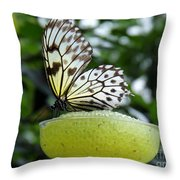 Butterfly Cocktail Time Throw Pillow