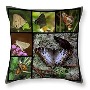 Butterfly Collage 1 Throw Pillow