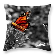 Butterfly Color On Black And White Throw Pillow