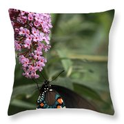 Butterfly Delight Throw Pillow