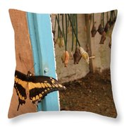 Butterfly Drying His New Wings Throw Pillow