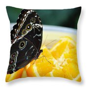Butterfly Haven Citrus Throw Pillow