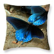 Butterfly Huddle At The Puddle Throw Pillow