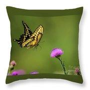 Butterfly In Flight Throw Pillow