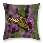 Butterfly In Lavender Throw Pillow