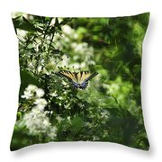 Butterfly In Muted Green Background Throw Pillow