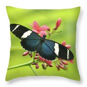 butterfly in Square Throw Pillow