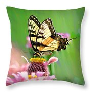 Butterfly In Summer Throw Pillow