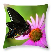 Butterfly In The Sun Throw Pillow