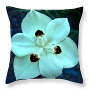 Butterfly Iris Throw Pillow